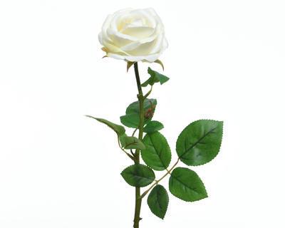 Květina RŮŽE KVĚT 66 cm - bílá, Kaemingk