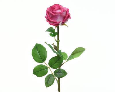 Květina RŮŽE KVĚT 66 cm - tm. růžová, Kaemingk