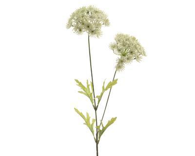 Rostlina QUEEN ANNE 60 cm, Kaemingk