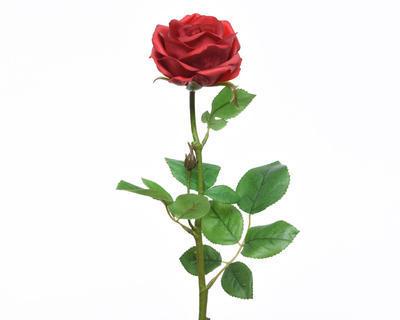 Květina RŮŽE KVĚT 68 cm - červená, Kaemingk