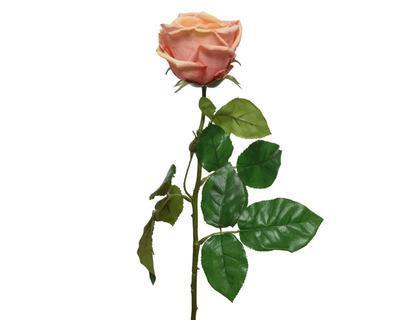 Růže, 68cm, broskvová, Kaemingk