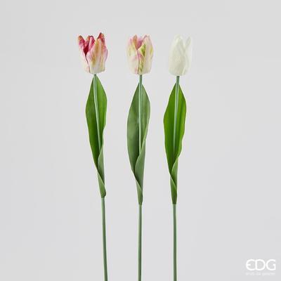 Květina TULIPÁN REX RAMO 53 cm - růžová/krémová, EDG