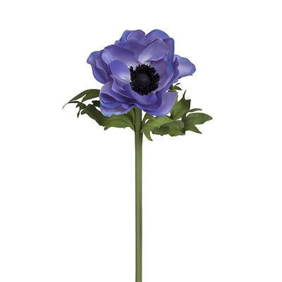 Květina SASANKA ANEMONKA H46 modrá, Sia