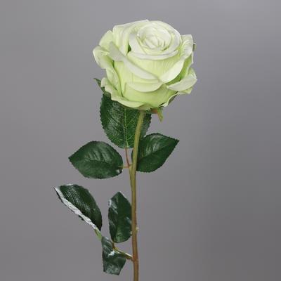Květina RŮŽE 56 cm - zelená, DPI