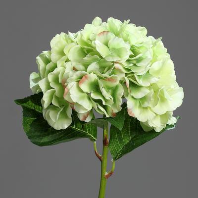 Květina HORTENZIE 60 cm - zelená/krémová, DPI