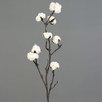 Větvička BAVLNA 100 cm, DPI
