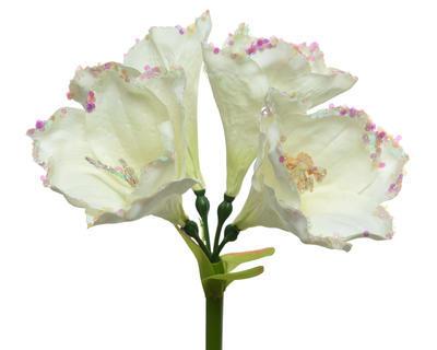 Vánoční umělá květina - AMARYLIS s glitry 55 cm - bílá, Kaemingk