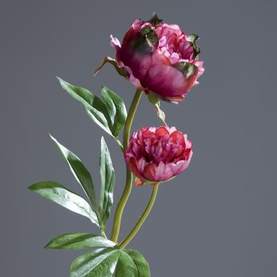 Květina PIVOŇKA 60 cm - fuchsia, DPI