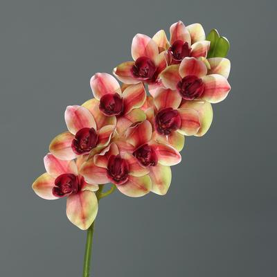 Květina stonek ORCHIDEJ CYMBIDIE 84 cm - vínová/oranžová, DPI