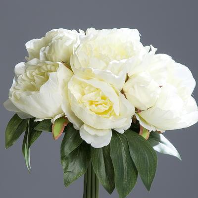 Květiny PIVOŇKY KYTICE 35 cm - krémová, DPI