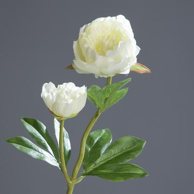 Květina PIVOŇKA 60 cm - krémová, DPI