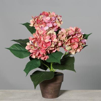 Květina v květináči HORTENZIE 38 cm - růžová, DPI