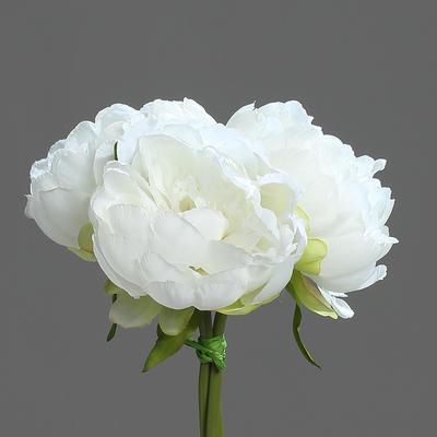 Květiny PIVOŇKY KYTICE 20 cm - bílá/krémová, DPI