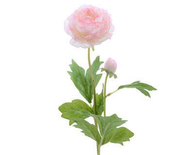 Rostlina RANUNCULUS 57 cm - sv. růžová, Kaemingk