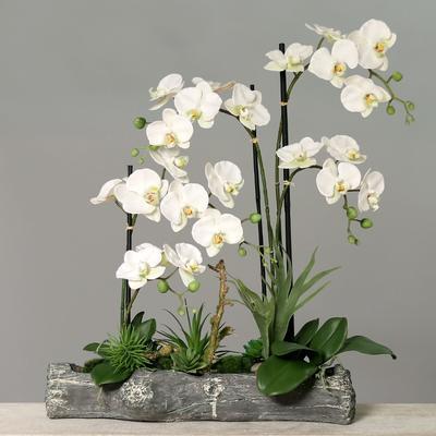 Květina aranžmá ORCHIDEJ 62 cm - krémová, DPI