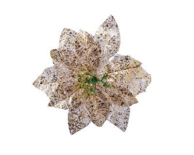 Vánoční hvězda na klipu, 16x3cm, zlatá, Kaemingk