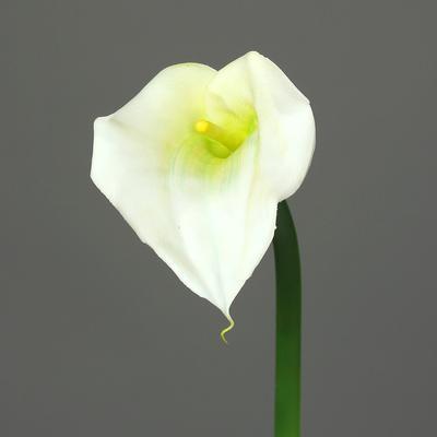 Květina KALA 68 cm - zelená/krémová, DPI