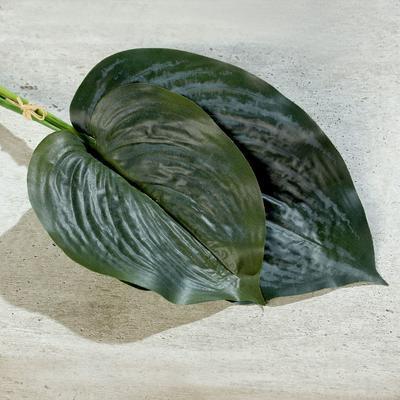 Rostlina LISTY SVAZEK 2 ks, 45 cm - zelená, DPI