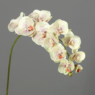 Květina ORCHIDEJ 97 cm - krémová, DPI