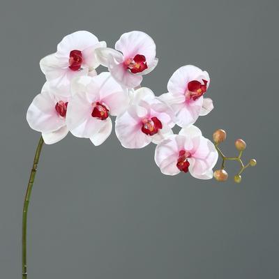 Květina ORCHIDEJ 118 cm - růžová/krémová, DPI