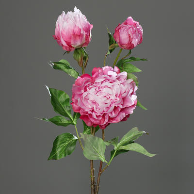 Květina PIVOŇKA 83 cm - fuchsia, DPI