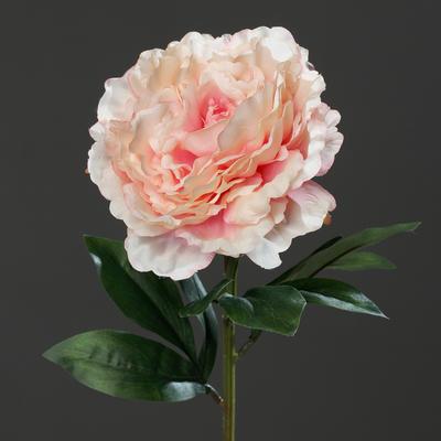 Květina PIVOŇKA 63 cm - růžová, DPI