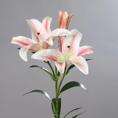 Květina LILIE 88 cm - růžová/bílá, DPI
