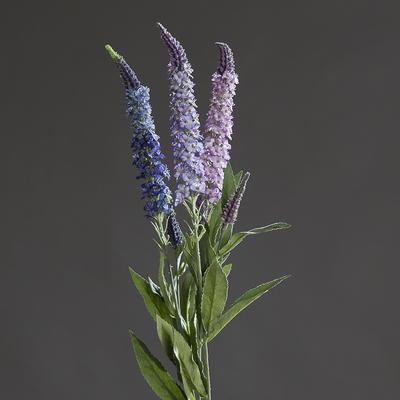 Rostlina ROZRAZIL 76 cm, DPI