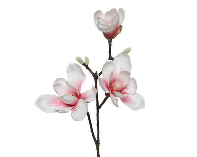 Magnolie, 50cm, světle růžová, Kaemingk