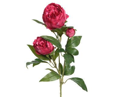 Květina PIVOŇKA 75 cm - fuchsiová, Kaemingk