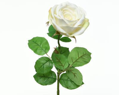 Květina RŮŽE KVĚT XL 68 cm - bílá, Kaemingk