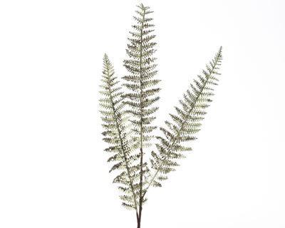 Vánoční umělá květina - Větvička kapradí XMAS 13x72 cm - zelená, Kaemingk