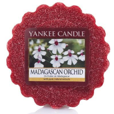 Vosk Madagascan Orchid, Yankee Candle