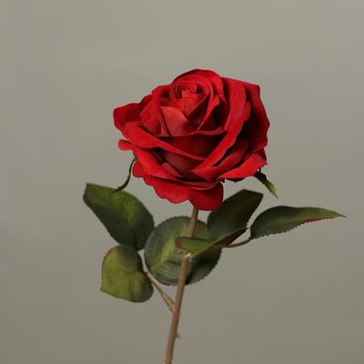 Květina RŮŽE 43 cm - burgundy, DPI