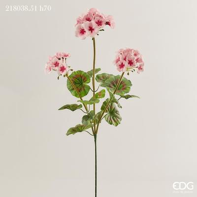 Květina PELARGONIE RAMO 70 cm - sv. růžová, EDG