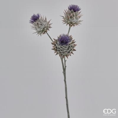 Rostlina BODLÁK RAMO REAL 60 cm - fialová, EDG