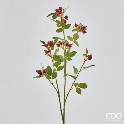 Větvička RŮŽE ŠÍPKOVÁ S PLODY 71 cm - červená, EDG