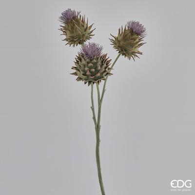 Rostlina BODLÁK RAMO REAL 60 cm - levandulová, EDG