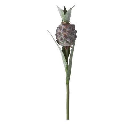 Květina ANANNAS H48 hnědá/zelená, Sia