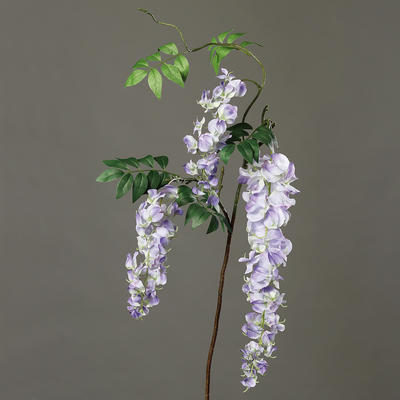 Rostlina ŠTĚDŘENEC 100 cm - levandulová, DPI