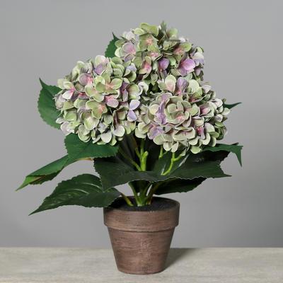 Květina v květináči HORTENZIE 38 cm - fialová/zelená, DPI