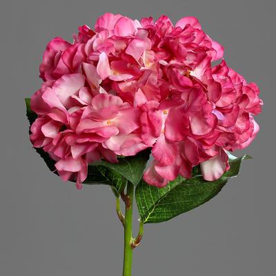 Květina HORTENZIE 60 cm - růžová/krémová, DPI