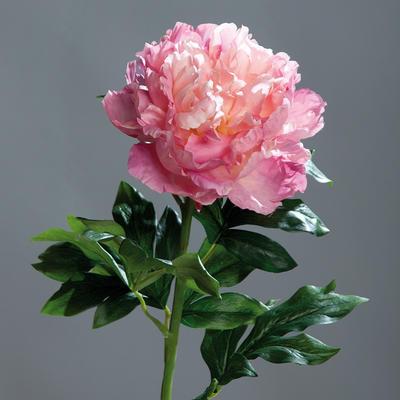 Květina PIVOŇKA SPRAY 76 cm - mauve, DPI