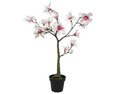 Magnolie v květináči, 102cm, světle růžová, Kaemingk