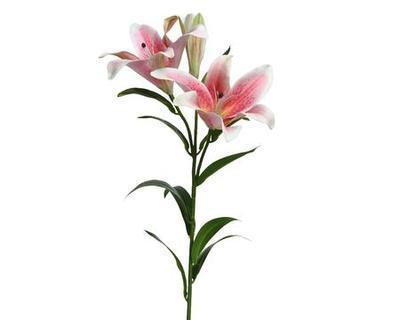 Květina LILIE, 3 květy - růžová, 90cm, Kaemingk