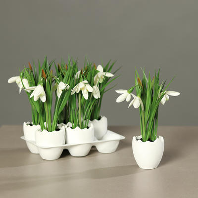 Květina ve vajíčku SNĚŽENKY 18 cm, DPI