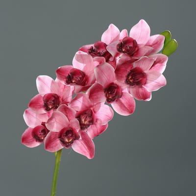 Květina stonek ORCHIDEJ CYMBIDIE 84 cm - růžová, DPI