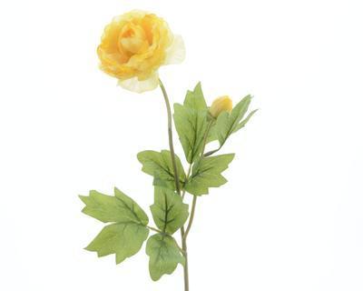 Rostlina RANUNCULUS 57 cm - žlutá, Kaemingk