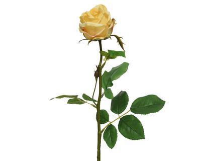 Růže, 66cm, žlutá, Kaemingk