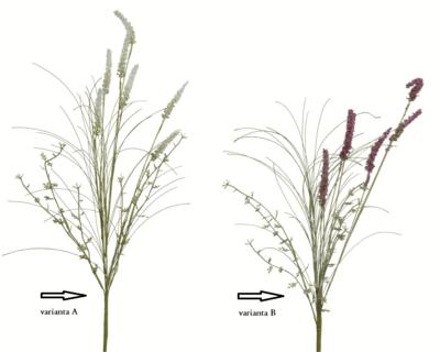 Hyacinth, 60cm, 2 druhy, Kaemingk - 2